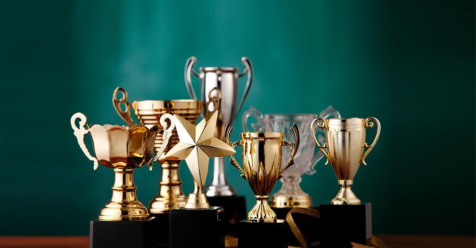 300+荣誉奖项 <br> 7大质量奖大满贯